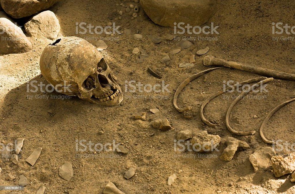 Human skeleton at graveyard royalty-free stock photo