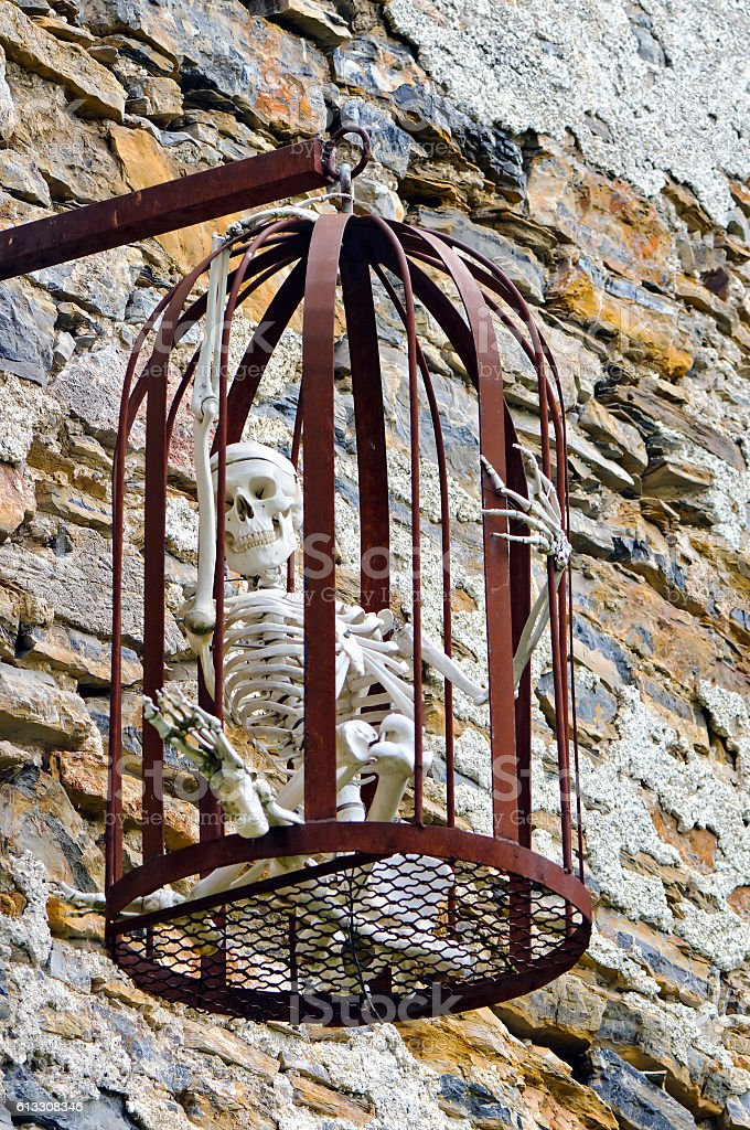 Human skeleton in a cage stock photo