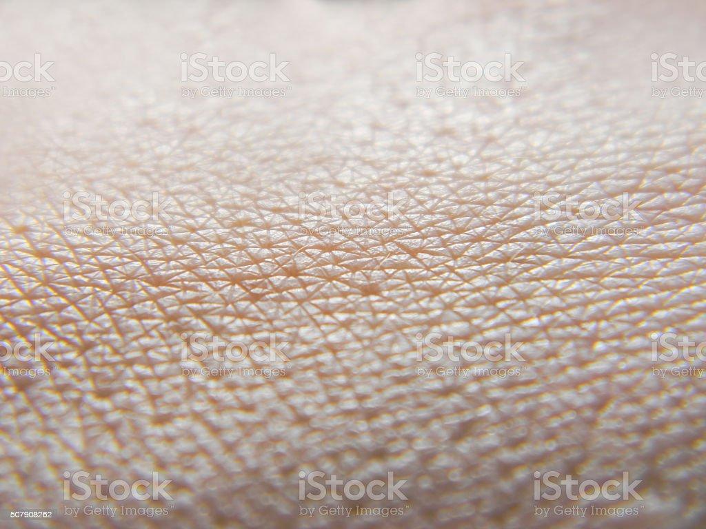 Human skin macro photo stock photo