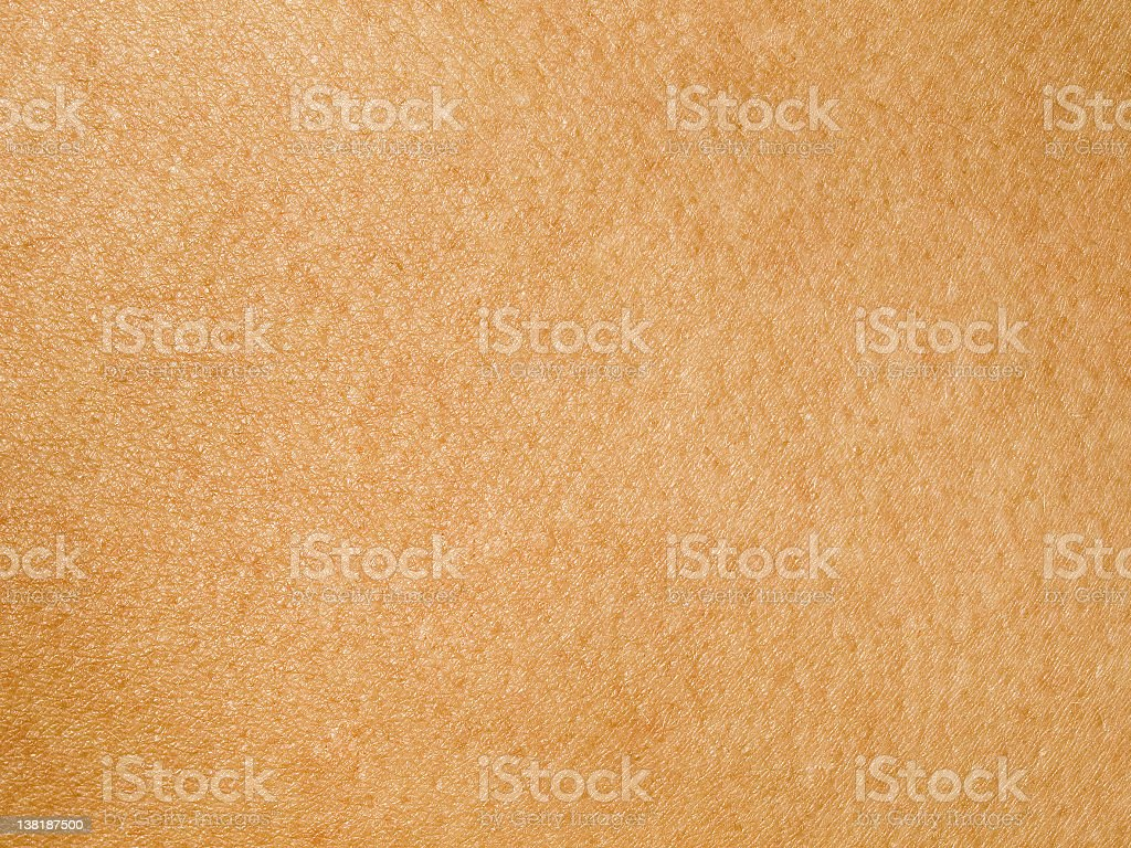 Human Skin royalty-free stock photo