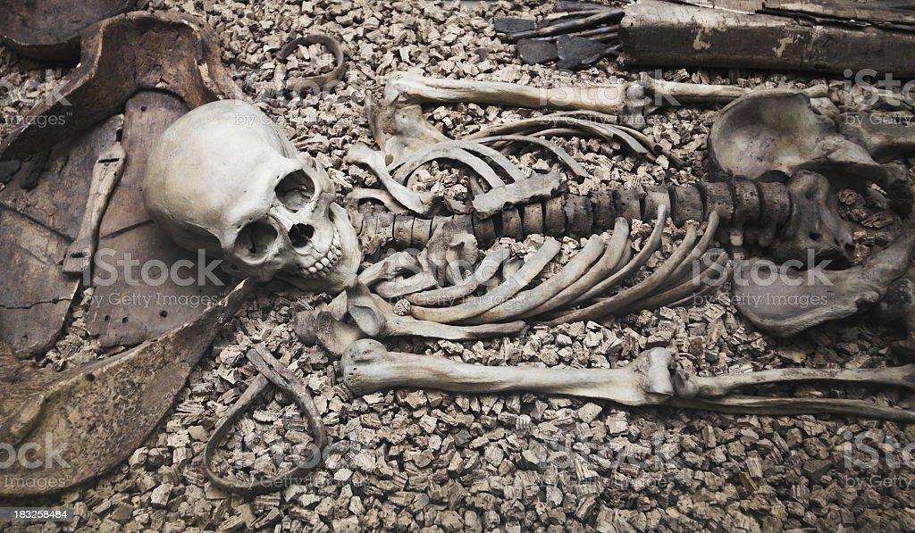 Human skull and bone remains laying on rocks royalty-free stock photo