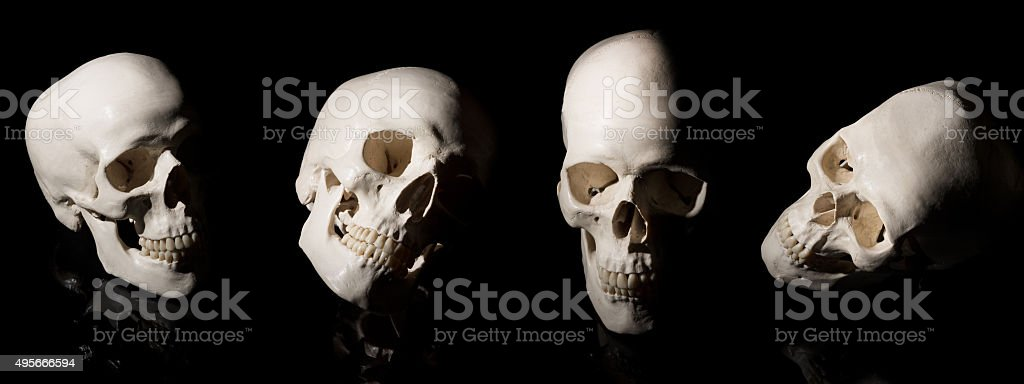 Human skull on black background stock photo
