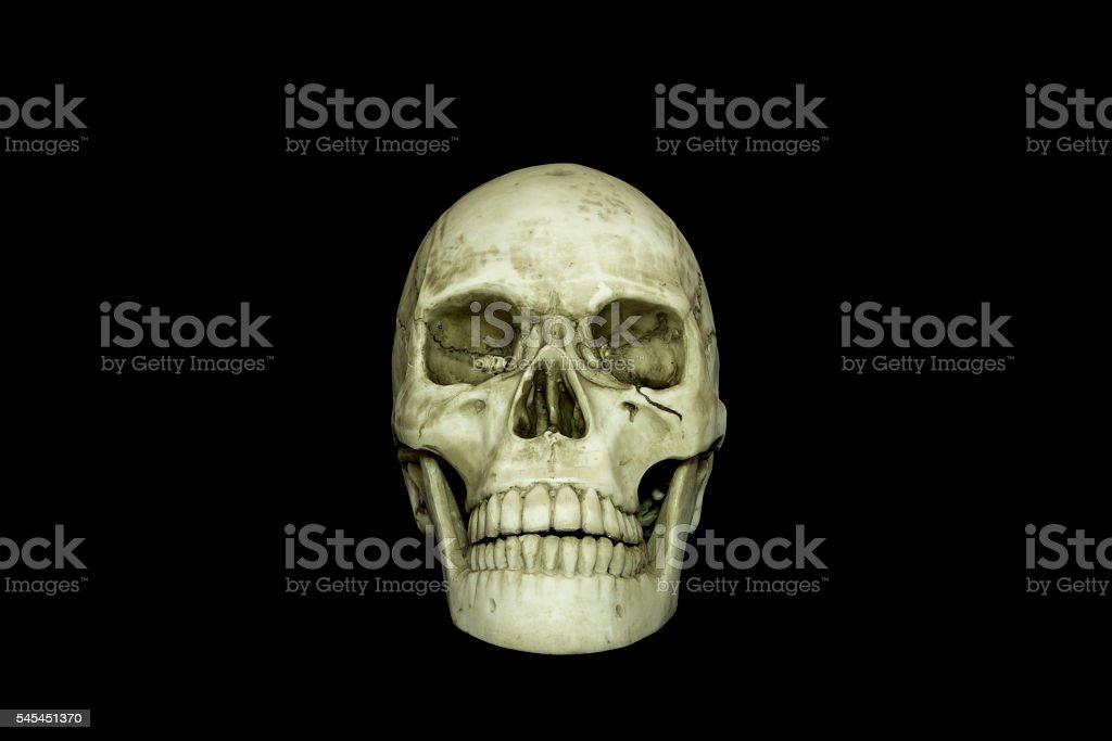 Human skull on isolated black background.. stock photo