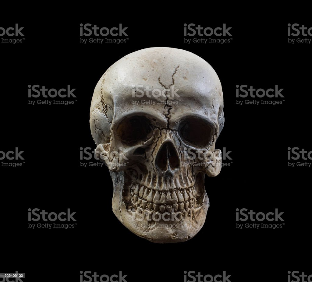 human skull on isolated black background stock photo