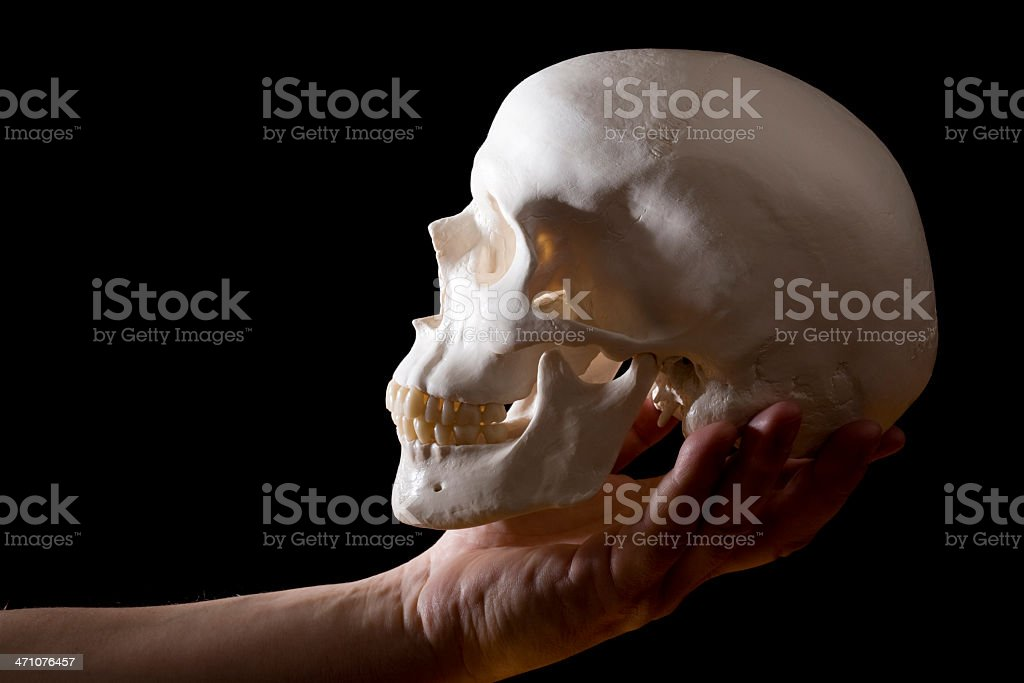 Human skull on male hand on black royalty-free stock photo