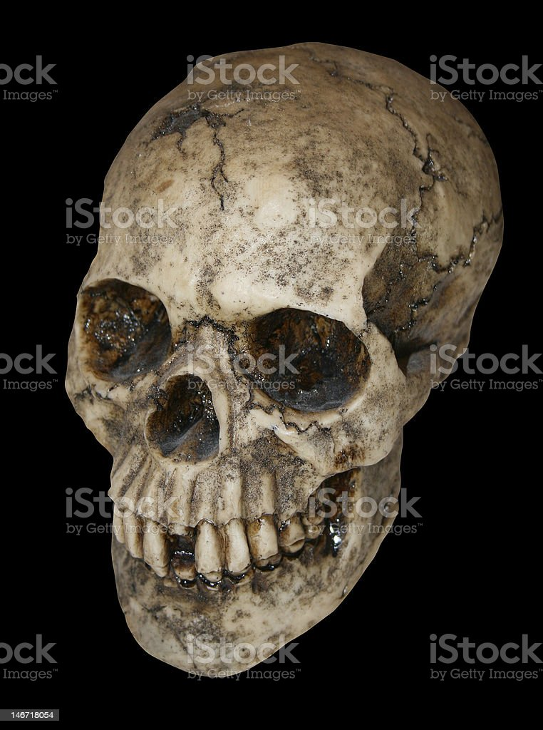 Human Skull over black stock photo