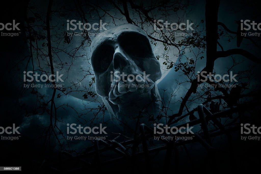 Human skull over dead tree and moon, Halloween concept stock photo