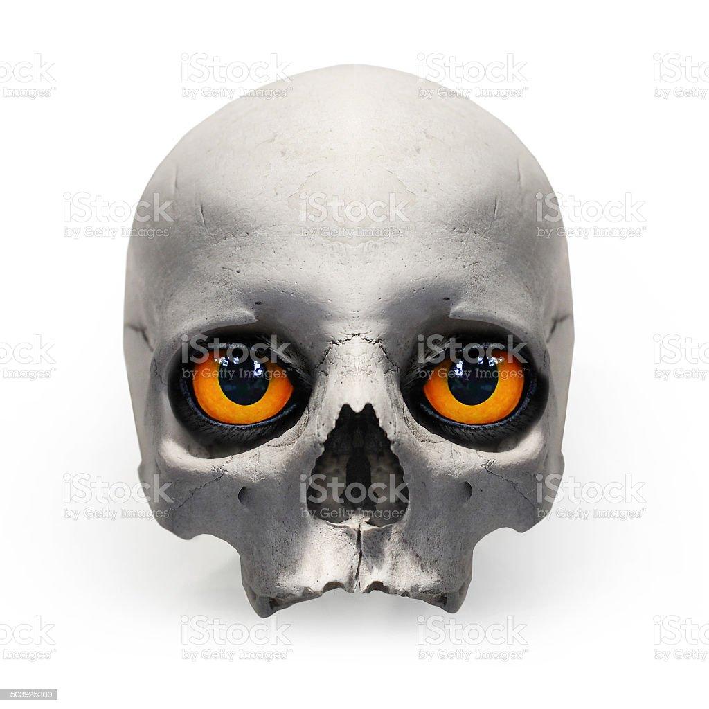 Human skull with evil eyes. stock photo