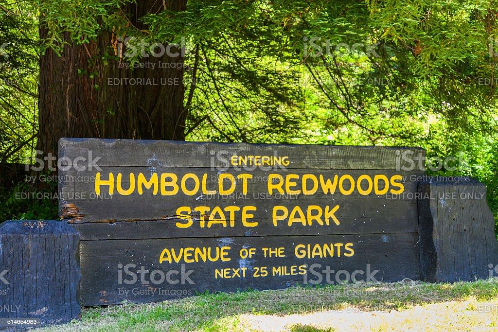 Humbodlt Redwoods State Park, California stock photo