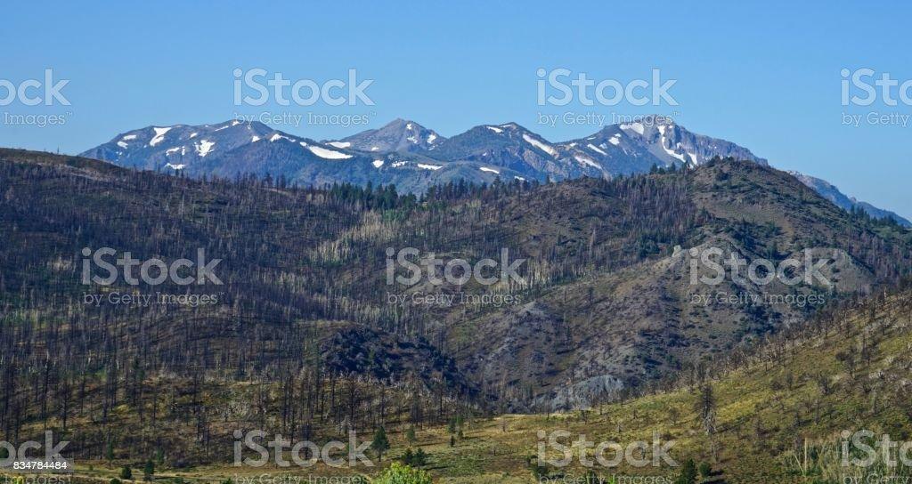 Humboldt-Toiyabe National Forest Pristine stock photo