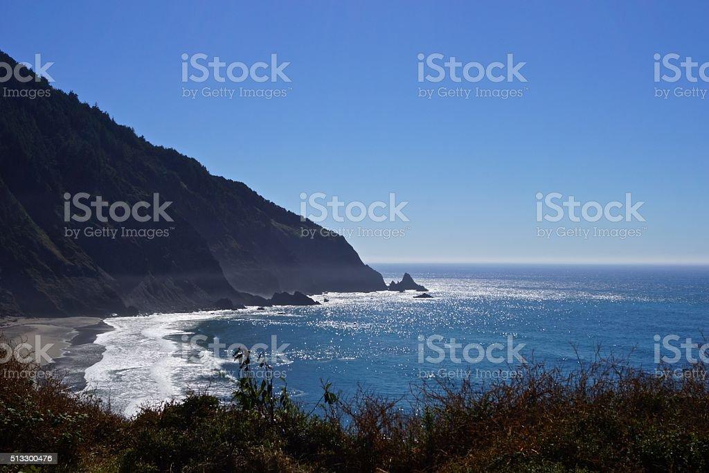 Humbug Mountain Beach stock photo