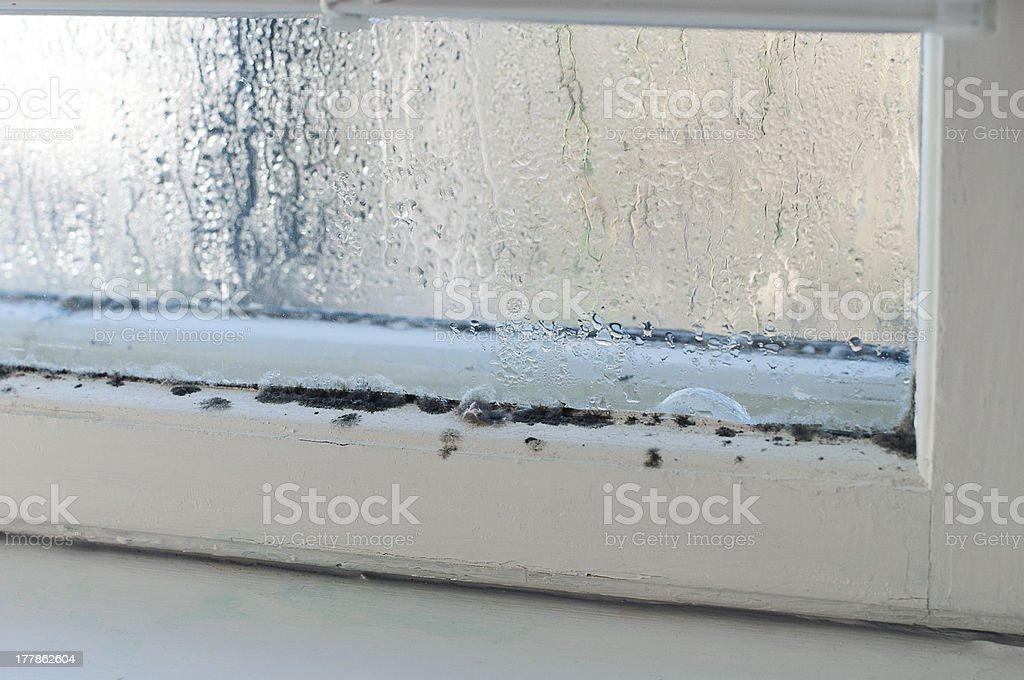 Humidity stock photo