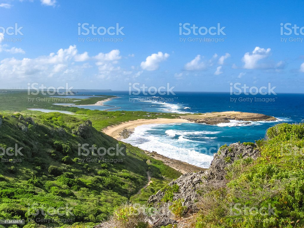 Colibris Point Guadeloupe stock photo