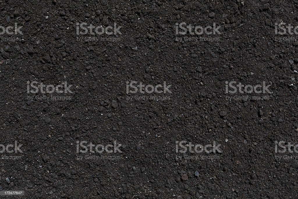 humus soil background royalty-free stock photo