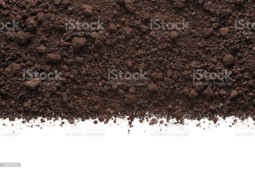 Humus Soil stock photo