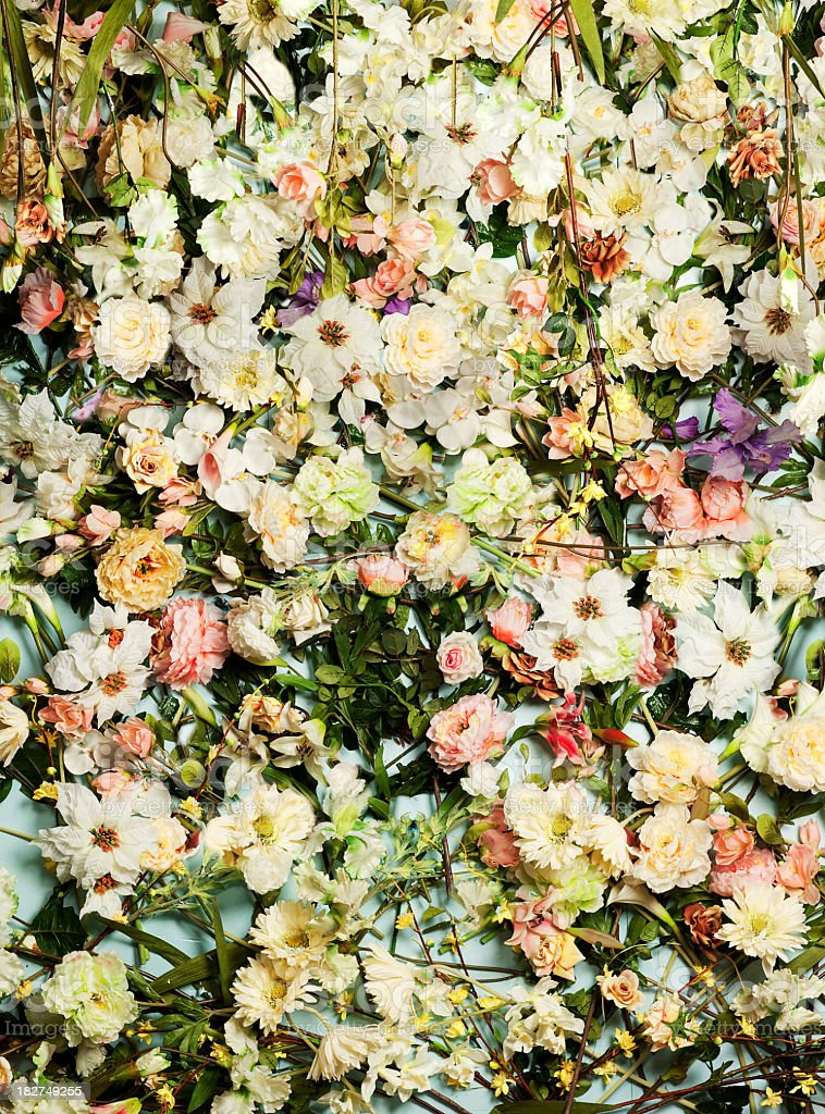 Hundreds of little daises and other flowers backgrounds stock photo