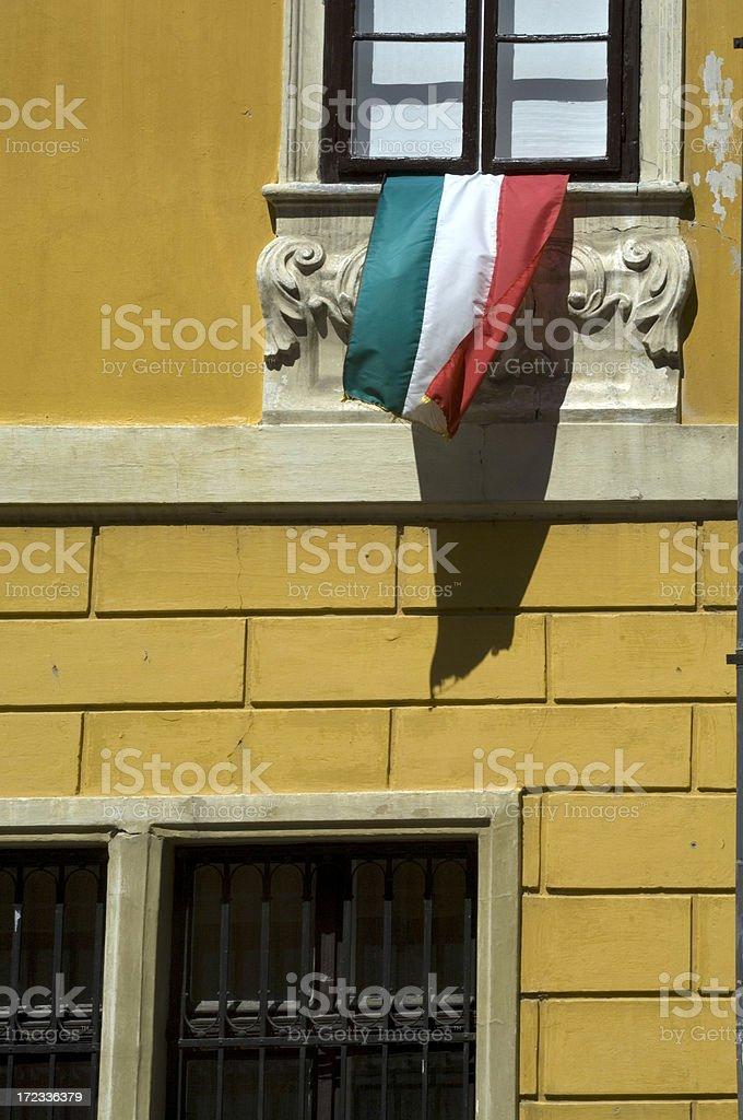 Hungarian flag royalty-free stock photo