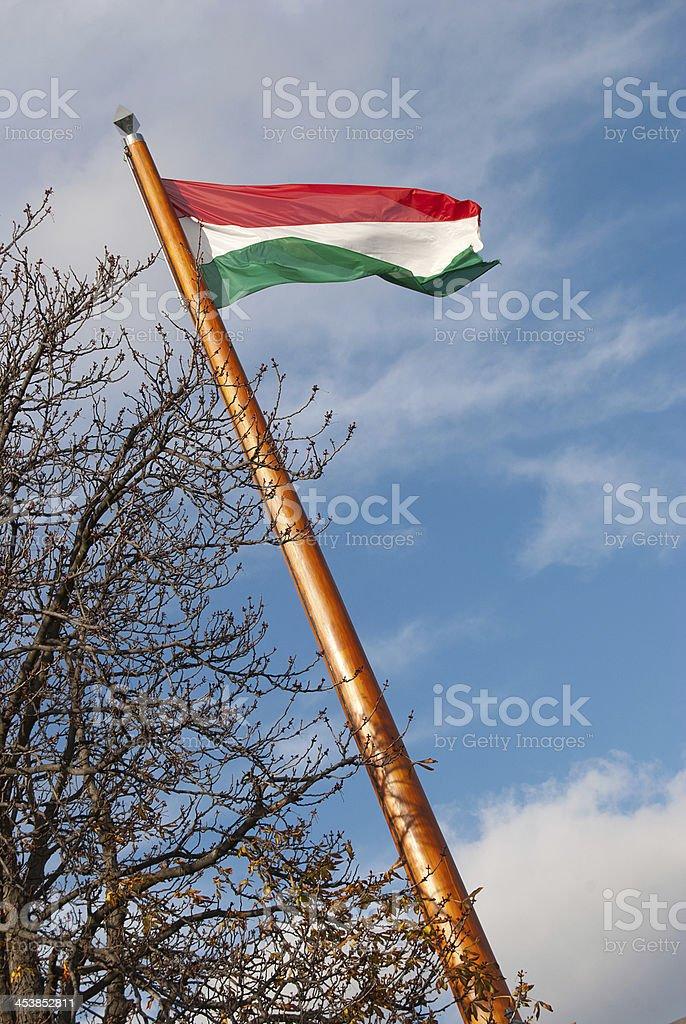 Bandera húngara foto de stock libre de derechos