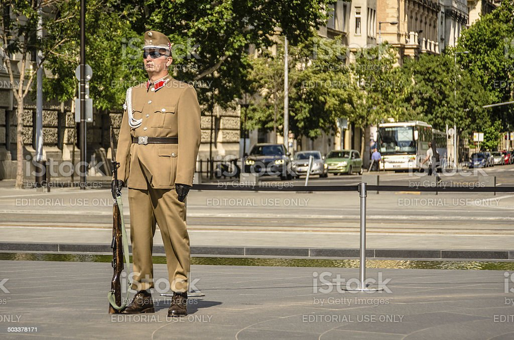 Hungarian Guard stock photo