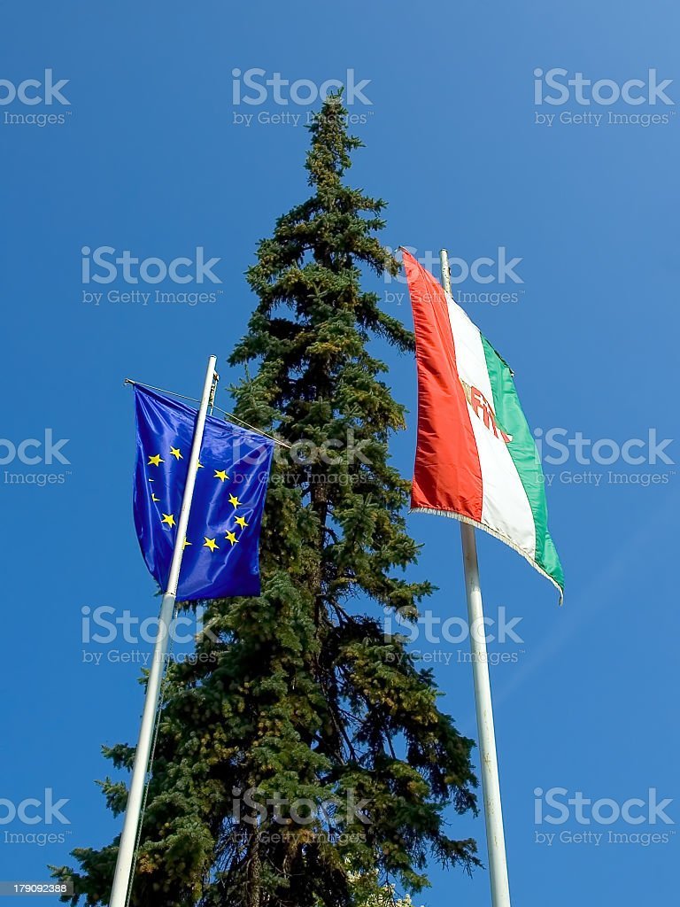 hungary and EU flag against tree royalty-free stock photo