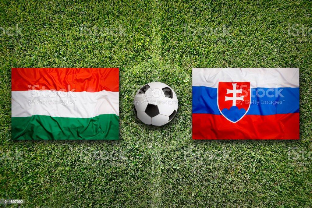 Hungary vs. Slovakia flags on soccer field stock photo