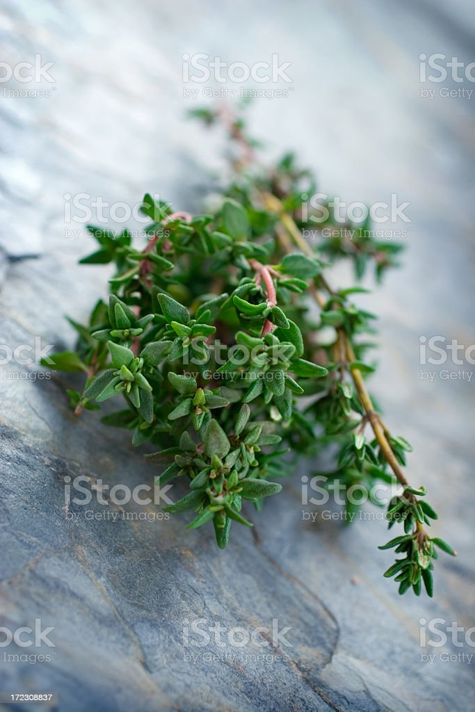 A hunk of thyme on a marble surface stock photo