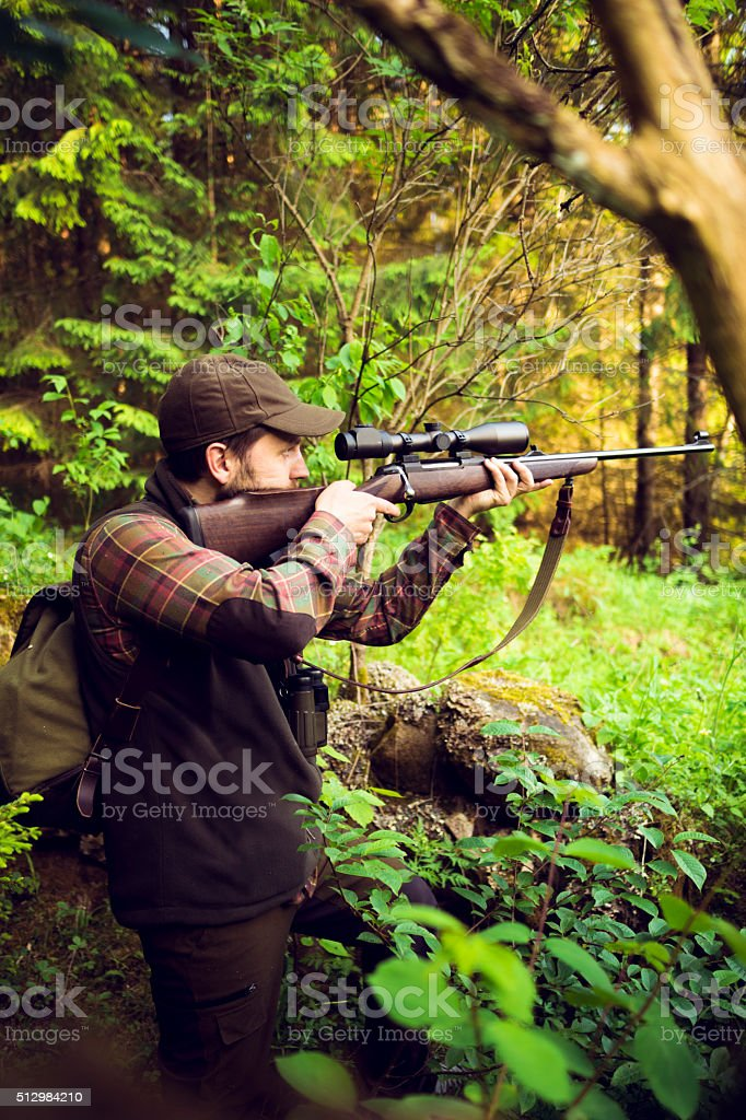 Hunter Aiming At Prey While Hiding In The Forest stock photo