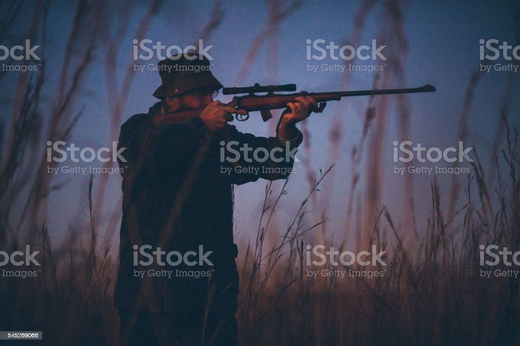 Hunter aiming prey on field with his rifle stock photo