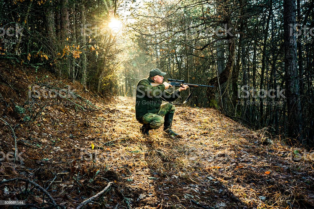 Hunter aiming with rifle in the forest stock photo