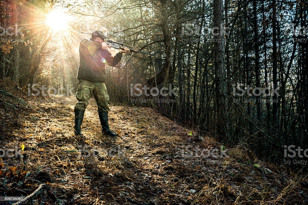 Hunter aiming with rifle in the woods stock photo
