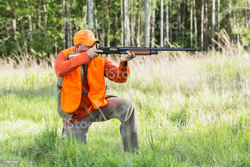 Hunter aiming with shotgun kneeling in tall grass stock photo
