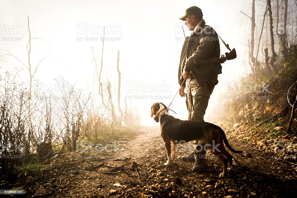 Hunter and his dog in the forest stock photo