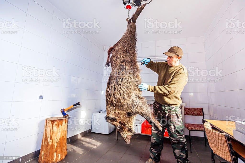 Hunter butcher skinned wild boar stock photo