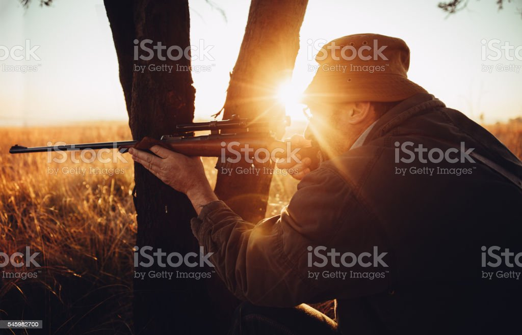 Hunter hiding behind tree on field shooting with rifle stock photo