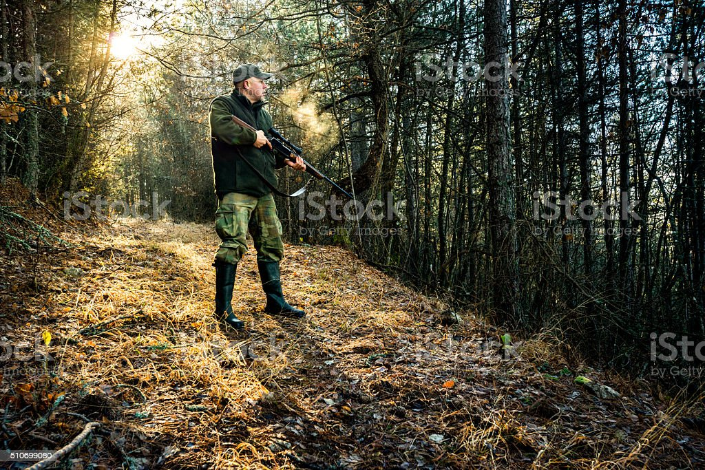 Hunter holding a rifle in the forest stock photo