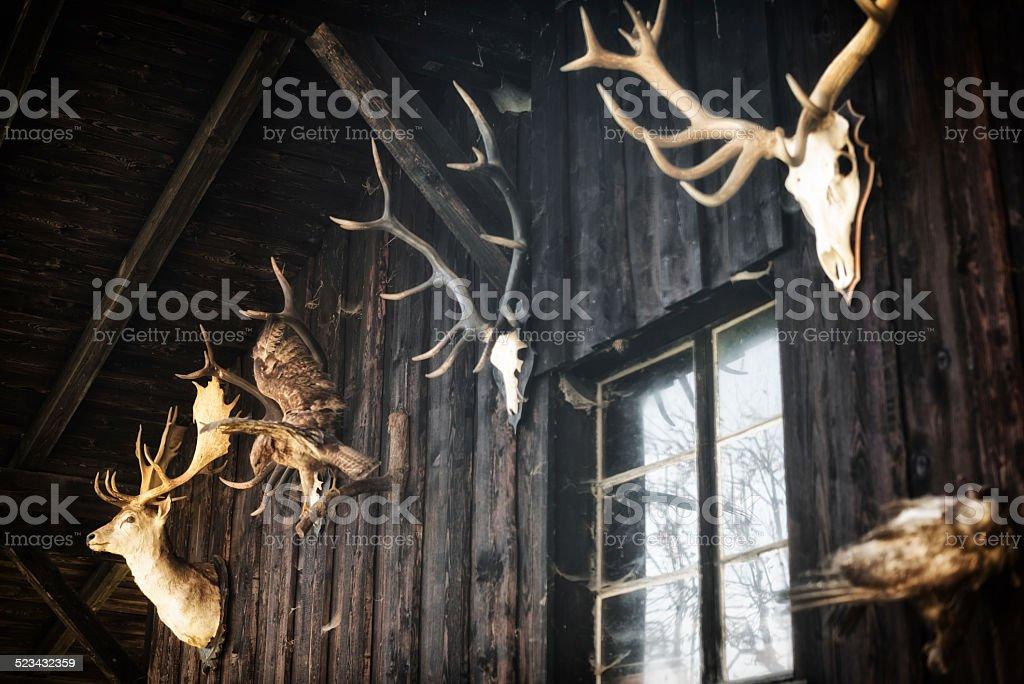 hunter hut with animal skulls in the european alps stock photo