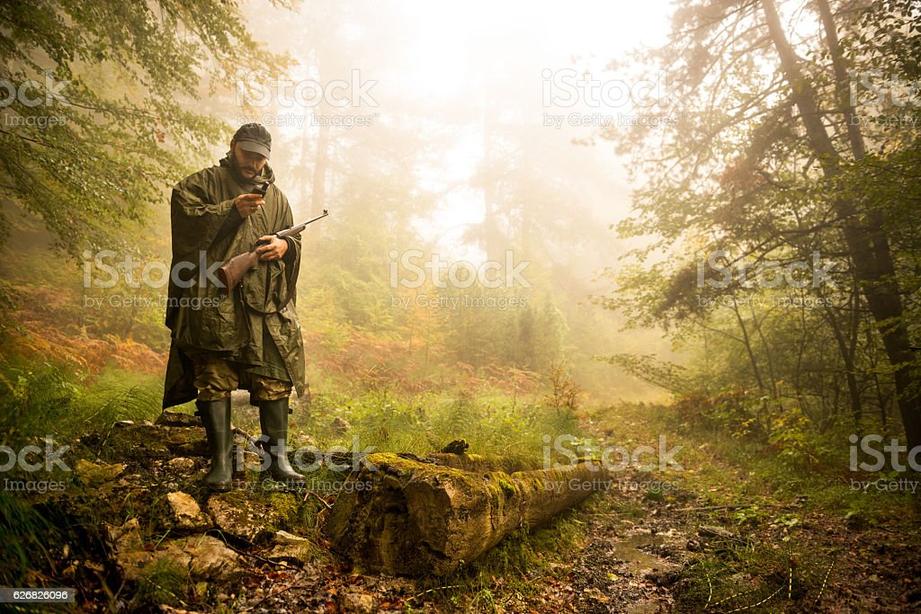 Hunter in the forest stock photo