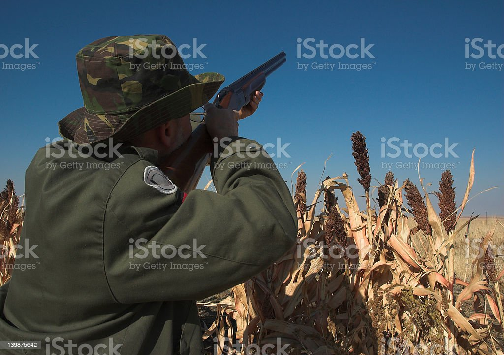 Hunter, shotgun and blue sky royalty-free stock photo