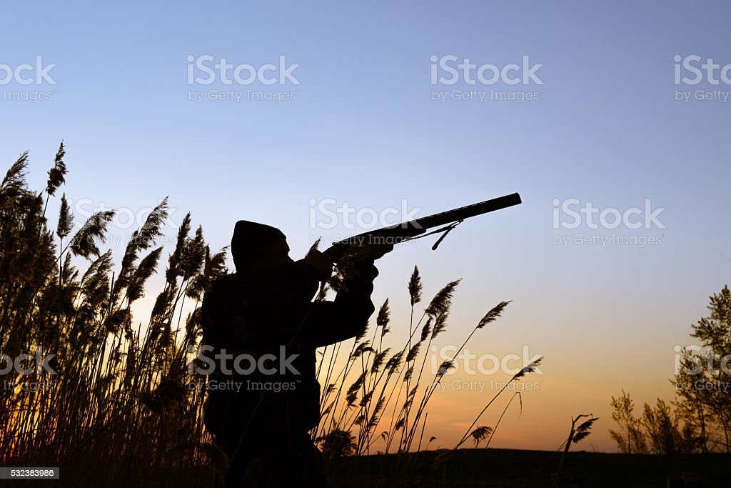 Hunter silhouette at sunset stock photo