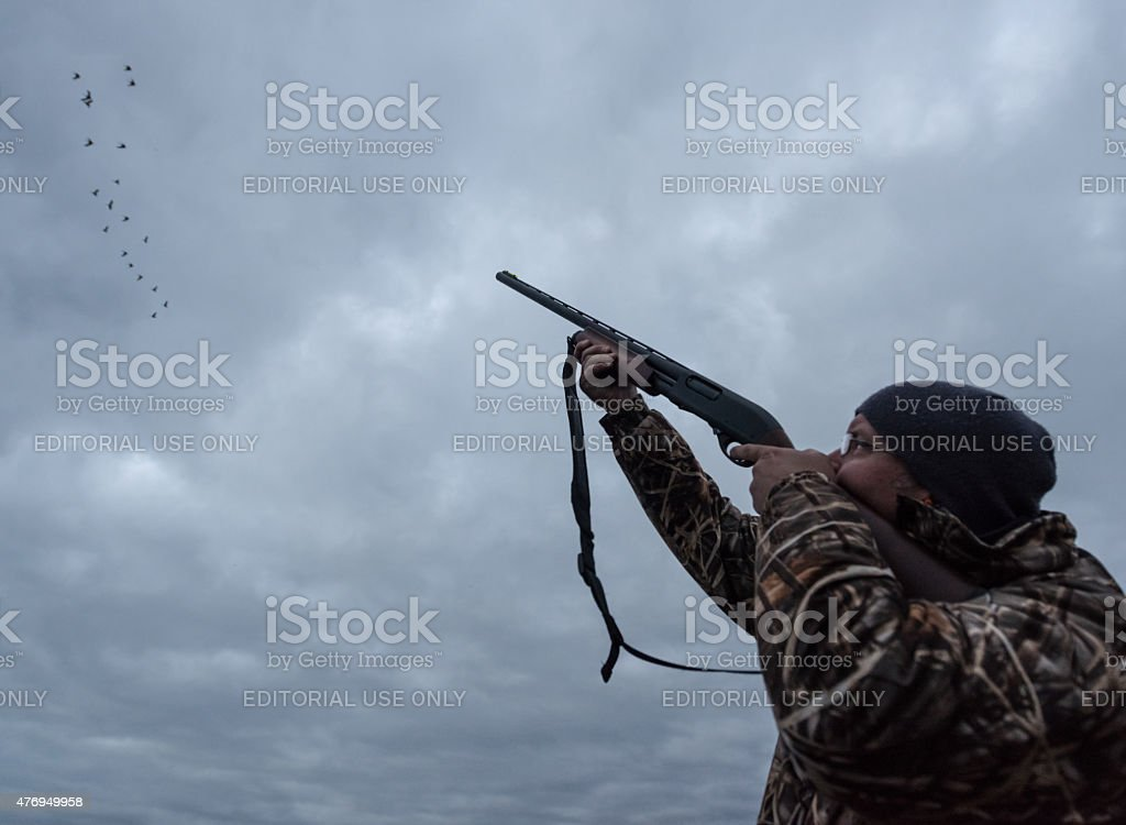 Hunter Takes Aim at Canada Geese stock photo