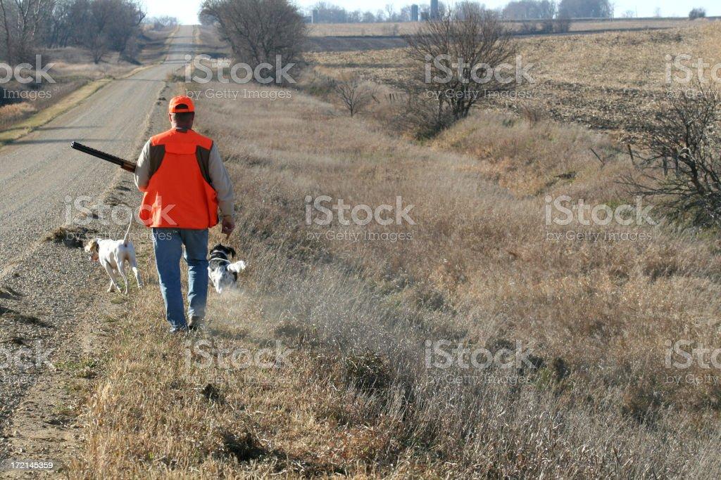 Hunter Walking Along Ditch - Pheasant Season royalty-free stock photo