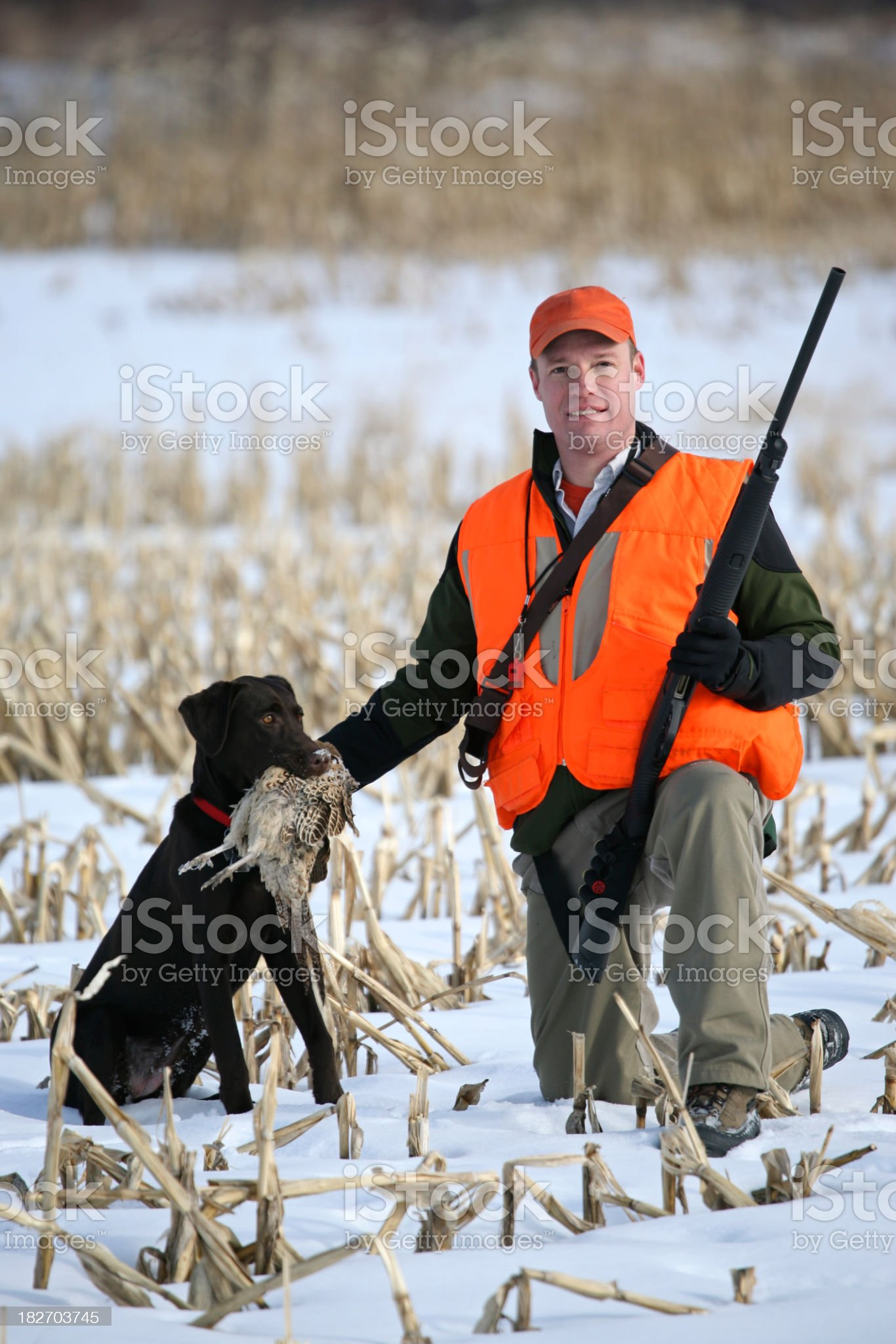 Hunter with a chocolate lab royalty-free stock photo