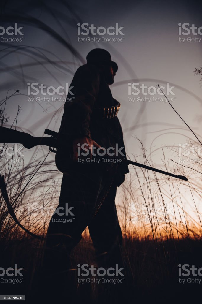 Hunter with cartridge observing grassland carrying shotgun stock photo