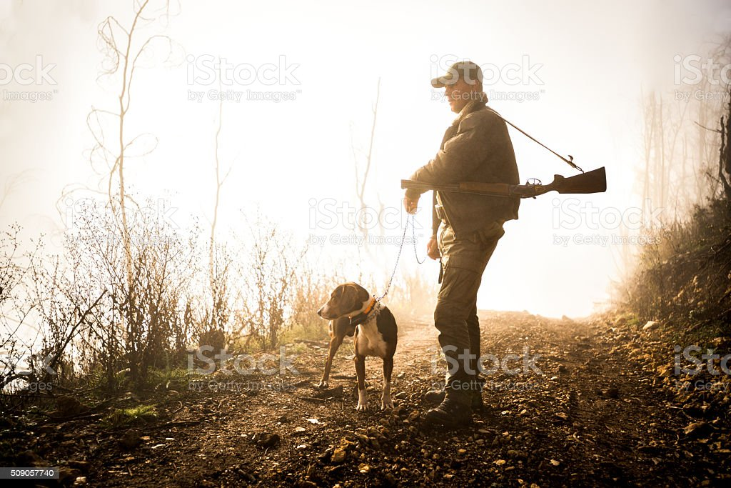 Hunter with dog in the forest stock photo