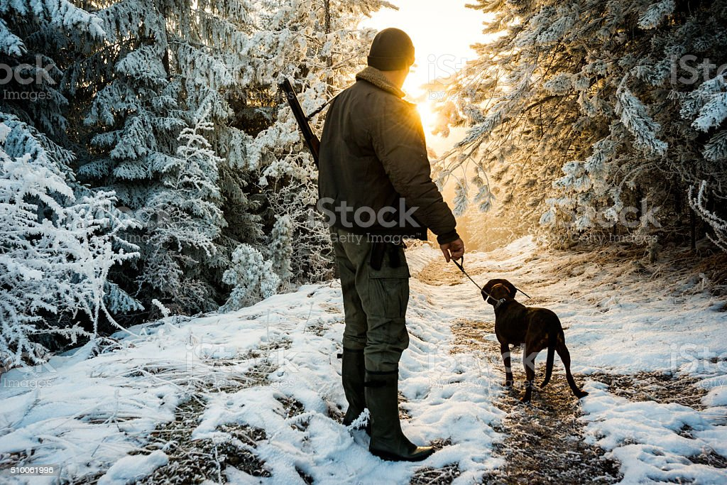 Hunter with dog in the snowy forest stock photo