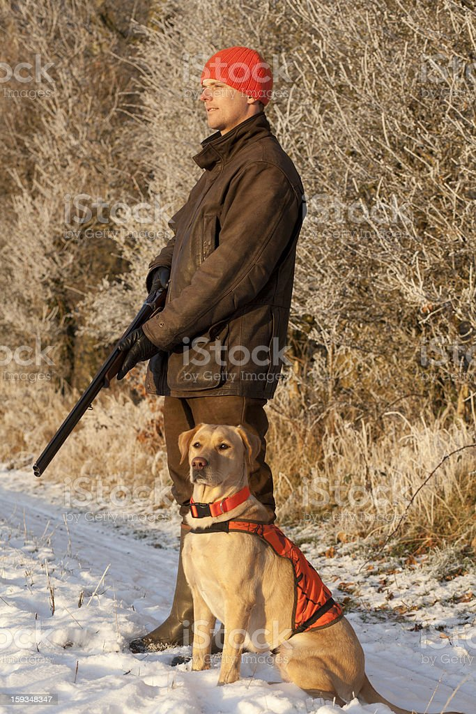 Hunter with dog stock photo