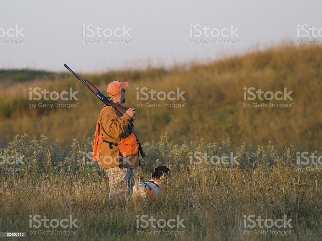 Hunter with his dog holding a rifle looking for prey stock photo