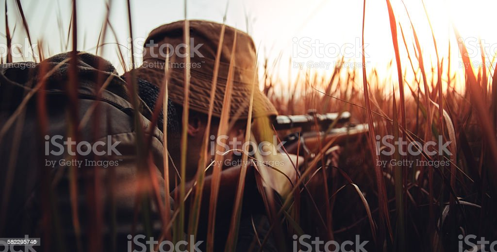 Hunter with rifle laying in long grass and concentrating on stock photo