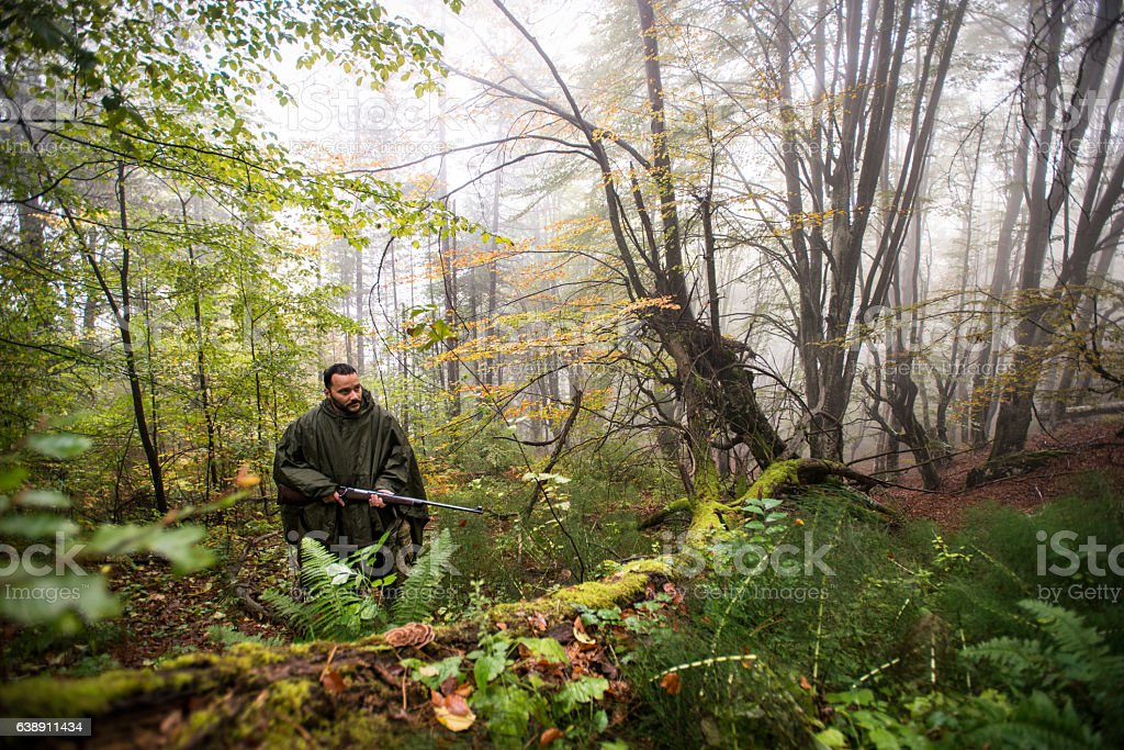 Hunter with rifle moving through the forest stock photo