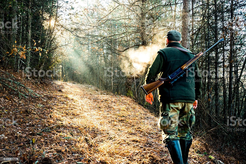 Hunter with rifle walking in the woods stock photo